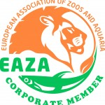 logo EAZA Corp