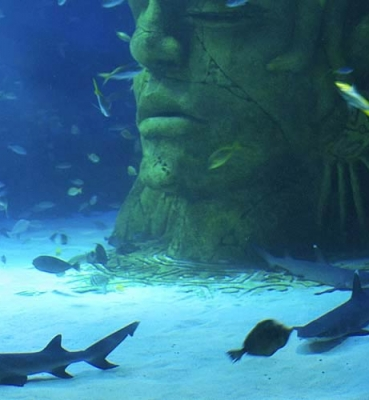 Aquariums & Zoos